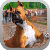 狗种族灵狮3D-狗赛车游戏 - 宠物秀 1