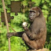 拼图 纽伦堡动物园 中国游戏 学龄前儿童,中小学生 和 成年人