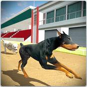 狗训练跳和特技模拟器3D