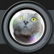 鱼眼相机 照片编辑 同 住 水晶球 镜片 和 颜色 过滤 效果