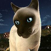 我的 猫 疯狂 酷跑 手游 - 动物 世界 宠物 游戏