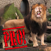 动物园我临 (Zoo Me Pro)