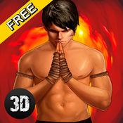泰国拳术格斗锦标赛3D 1.3