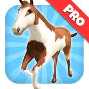 一匹马骑:野径运行和跳跃游戏 1.1