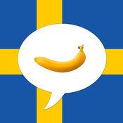 瑞典图解词典
