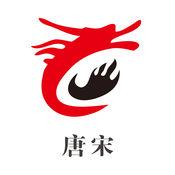 唐宋集团 1