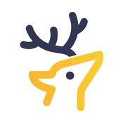 小鹿咚咚 36893