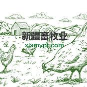 新疆畜牧业