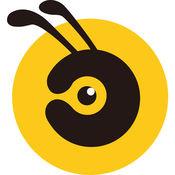 蚂蚁麦麦 1
