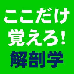 ここだけ覚えろ!解剖学【试験対策&学习】 1.0.1