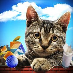 猫模拟器2018年:大鼠VS猫