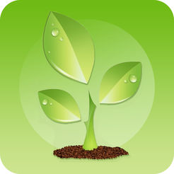 绿色食品网