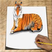 如何绘制动物3D 1.2
