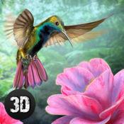 蜂鸟模拟器3D 1