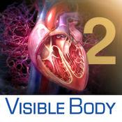 3D Heart & Circulatory Premium 2(三维心脏和循环系统高级解剖 2)