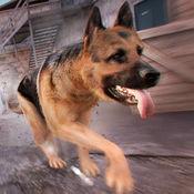 全民 狗狗游戏 . 我的 小 狗 赛跑 赛 免费 为 女孩