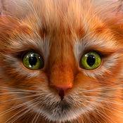 我的小猫(猫仿真...
