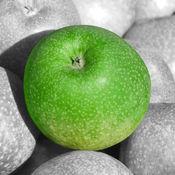照片编辑颜色效果 - 选择详细信息上图片至加紧闪耀光 1