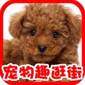 【宠物趣逛街】猫猫狗狗逛淘宝天猫精品购物另有搞笑宠物动画照片微博分享
