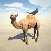 沙丘模拟器