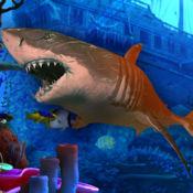饥饿的鲨鱼狩猎...