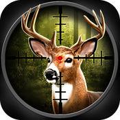 打猎狙击2-猎熊·猎狼·猎鹿