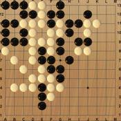Light 围棋 13x
