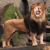 我动物园 (Zoo Me!)