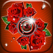 玫瑰花照片编辑器 - 浪漫 玫瑰 相框 和 花贴纸