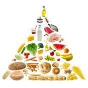 纤维食物知识百科:自学指南、视频教程和技巧 1