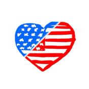 美国! - 七月独立日庆祝活动照片4