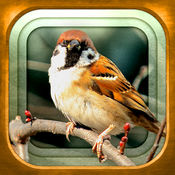 GPS動く野鳥図鑑mini 1.1