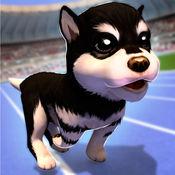 跑酷狗狗 1.6.0
