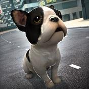 天天 卡通 宠物 狗狗 开心 梦幻 酷跑