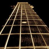 标准的吉他调谐器