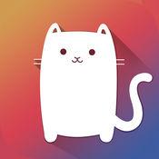 Purr Cat - 最可爱的猫咪图片、照片和壁纸