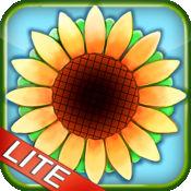 阳光农场 Lite