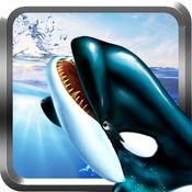 逆戟鲸杀手鲸生存模拟器3D - 鲸鱼袭击亲