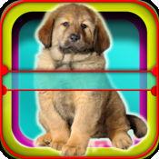 犬星术应用程序:有趣的你的宠物的星术 - 免费的