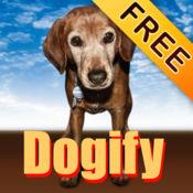 Dogify你的照片!免费