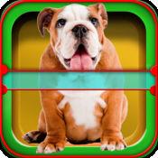 犬星术应用程序:有趣的你的宠物的星术 5