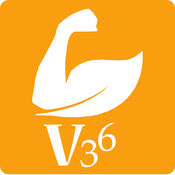 V36平台