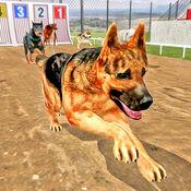 狗特技跳训练模拟器3D