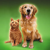 猫叫狗叫模拟器