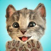 Little Kitten - 我最喜爱的猫猫 1.7