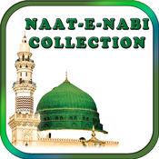 美丽Madni NAAT-E-彩蝶系列。 1