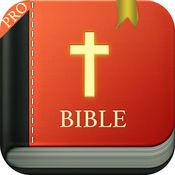 圣经专业版– 圣经中文版,语音朗读+同步字幕