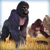 超级 大猩猩 猴 ...