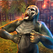 大猩猩攻击模拟...