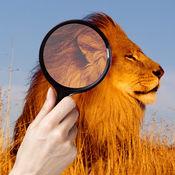 找 和 点 该 差异 照片 动物园 动物 1